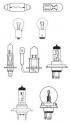 Autoelektrické diely - žiarovky