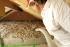 Izolačné a konštrukčné materiály pre nízkoenergetické a pasívne drevostavby